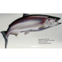 Наклейка Aquatic Лосось (ламинированный материал)