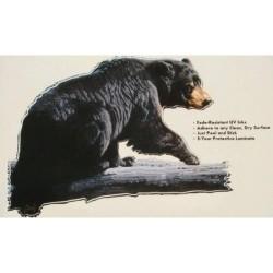 Наклейка Aquatic Медведь (ламинированный материал)